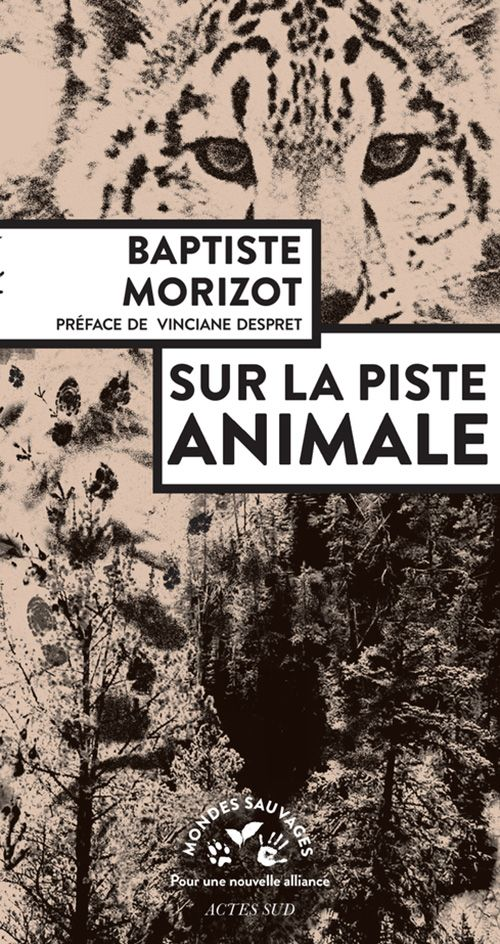 Sur la piste animale (EPUB)